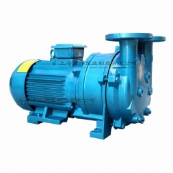 2BV5111型水环式真空泵