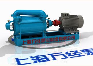 2SK系列水环式真空泵的内部结构-分解视频